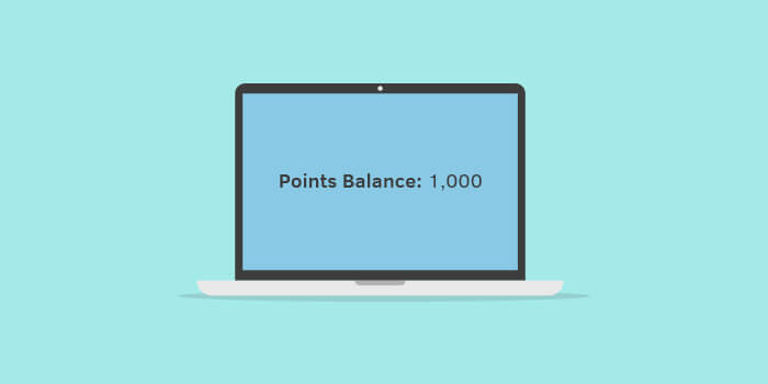 customer loyalty points balance