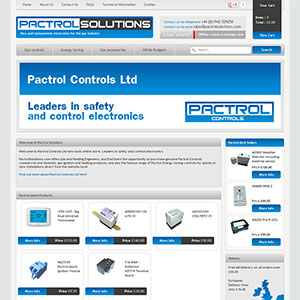 eCommerce website design - pactrolsolution